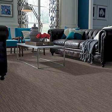 Anso® Nylon Carpet in Lynnwood, WA
